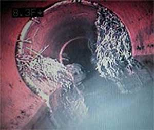 Phoenix Sewer Video Inspections